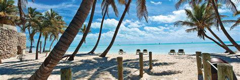Glass Bottom Boat Key West by Book The Key West Glass Bottom Boat Trip From Miami