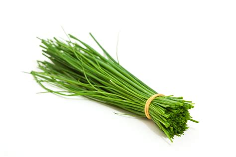 ideas for small living rooms chives a versatile herb easy to use and grow your own