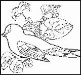 Goldfinch Coloringbook Bird State Coloring Eastern Nj Hangout sketch template