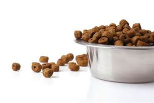Affordable Hypoallergenic Dog Food
