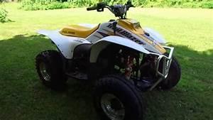 Project  Polaris Trailblazer 250