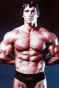 Six Star Muscle  Arnold Schwarzenegger