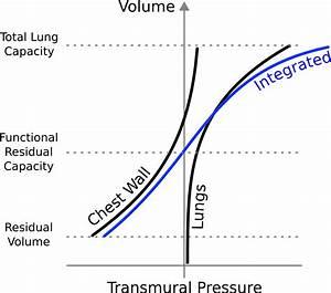 Heart Pressure Volume Diagram