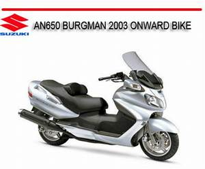 Suzuki An650 Burgman 2003 Onward Bike Repair Service