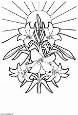 Funeral Coloring Pages Holiday Picgifs sketch template