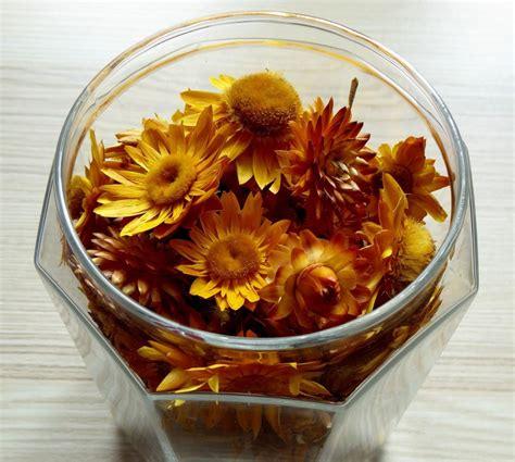 decorazioni vasi composizioni di fiori secchi in vasi di vetro come creare
