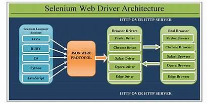 Selenium Architecture Webdriver Web Fita