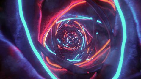 warm neon birth  vimeo