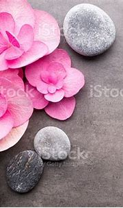 Wellness Background Stock Photo - Download Image Now - iStock