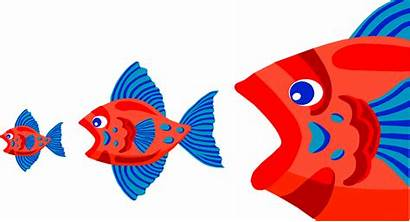 Fish Acquisition Eating Each Illustration Three Merger