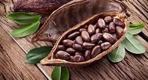 Wo Kann Man Ammoniak Kaufen : wo kann man kakaonibs kaufen ~ Bigdaddyawards.com Haus und Dekorationen