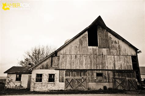 personal project barns  illinois part  amber fox