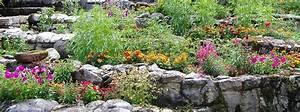 Pflanzen Für Steingarten : steingarten wikipedia ~ Michelbontemps.com Haus und Dekorationen