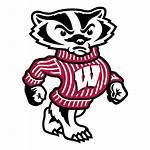 Wisconsin Badgers Logos University Vector Badger Transparent