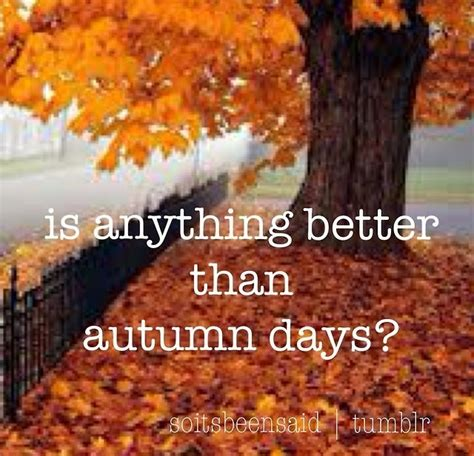Quotes About Fall Season Quotesgram