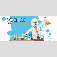 Our 5 Favorite 2nd Grade Science Worksheets Parenting