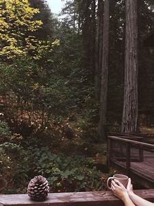 love photography hipster vintage boho indie nature forest ...
