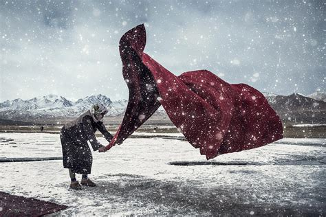 beautiful images   sony world photography awards