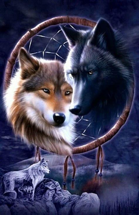 wolf traumfaenger verliebte woelfe tiere geisttier