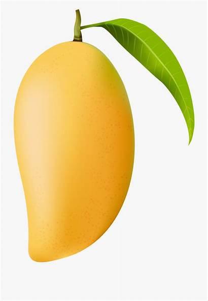 Mango Clip Background Transparent Single Cartoon Fruit