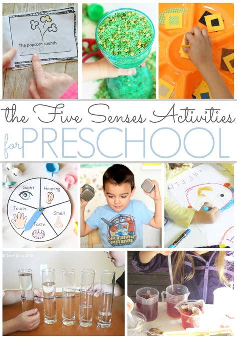 preschool activities that feature the five senses pre k 5 | 5 senses pinterest