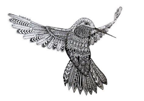 colibri  lucia paul lu paul coloriages annimaux