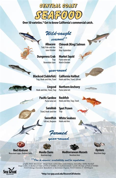 discover california commercial fisheries california sea