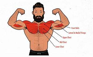 The Bench Press Hypertrophy Guide  U2013 Outlift
