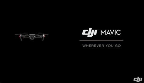 shouldnt   dji mavic pro drone