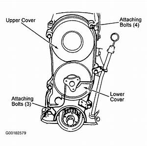 1988 Ford Festiva Serpentine Belt Routing And Timing Belt
