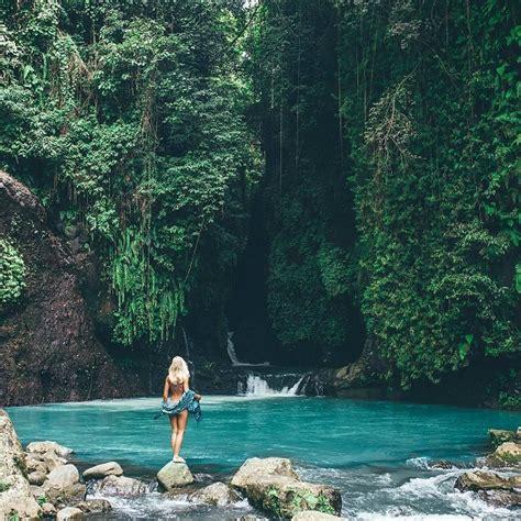 secret garden long trekking palm living