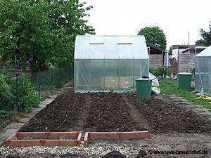 Blumenkohl Pflanzen Abstand : gartentagebuch mai 2009 ~ Whattoseeinmadrid.com Haus und Dekorationen