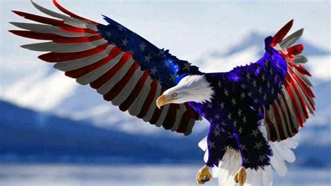 bald eagle american flag hd wallpaper  mobile phones