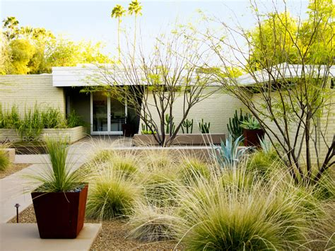 pictures of desert landscape front yards 4 essential desert landscaping ideas sunset magazine