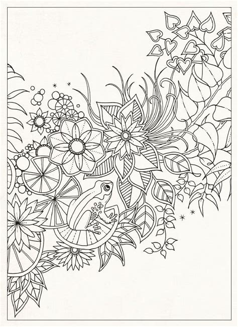 secret gardens coloring for adults and coloring on pinterest