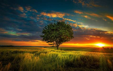 Cool Nature Picture by Amazing Views Cool Nature Photos Nature Wallpaper For