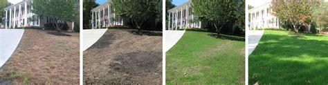seeding a lawn lawn seeding services in kansas city grass seeding company