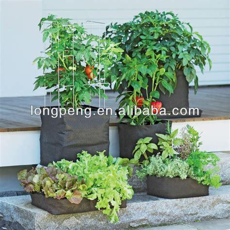 culture poivron en pot feutre vigoroot pots et jardini 232 res grandir sacs 192 planter des tomates poivrons herbes et