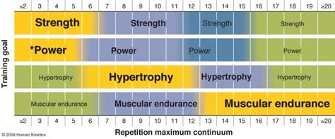 Football Bench by How Effective Is Body Beast For Hypertrophy Tyler