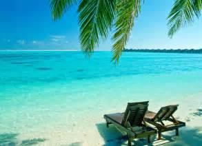 Summer Beach Scenes
