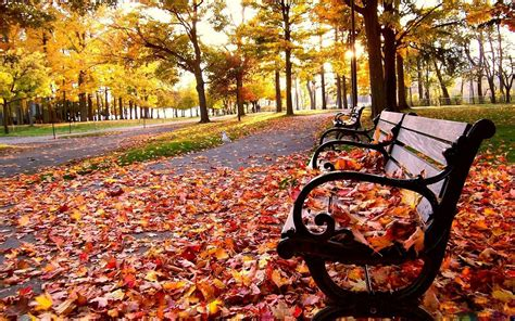 Fall Backgrounds For Desktop Computers by Fall Wallpapers Hd Pixelstalk Net
