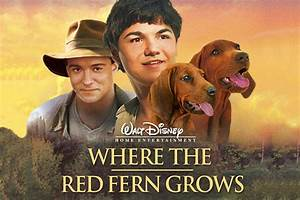 Where The Red Fern Grows - mbc.net - English