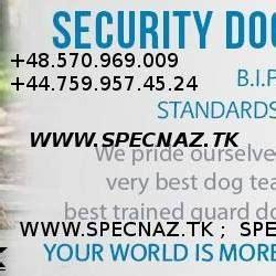 Bodyguard Services Paris, France:::Hire VIP Security ...