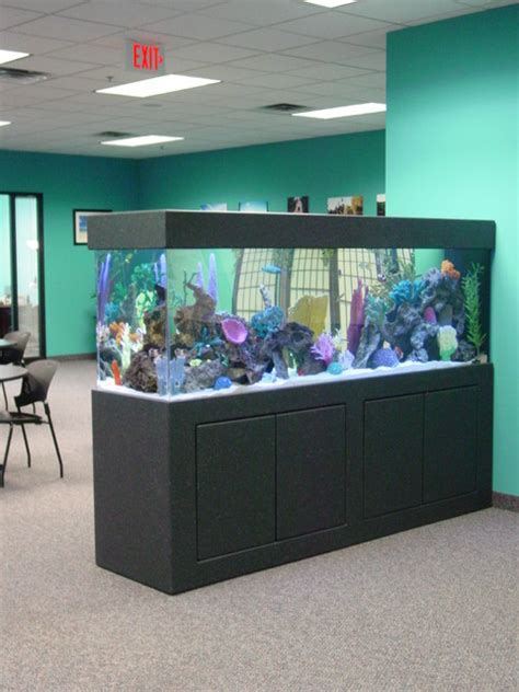 Free Standing Aquariums   minneapolis   by Premier
