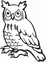 Coloring Owl Owls Printable Drawing Sheets sketch template