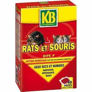 Produit Pour Tuer Les Souris : produit pour tuer les souris produit pour tuer les souris taupier sur la france produit contre ~ Melissatoandfro.com Idées de Décoration