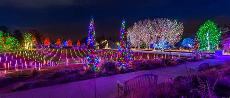 Denver Botanic Gardens Lights by Blossoms Of Light Improving The Visitor Experience