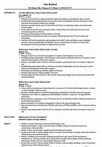 Principal Solution Specialist Resume Samples