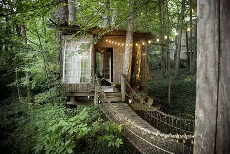 breathtaking tree houses    rent  airbnb