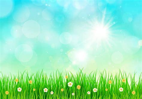 spring  vector art   downloads
